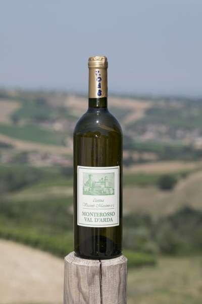 Cantina Visconti - ortrugo -vini