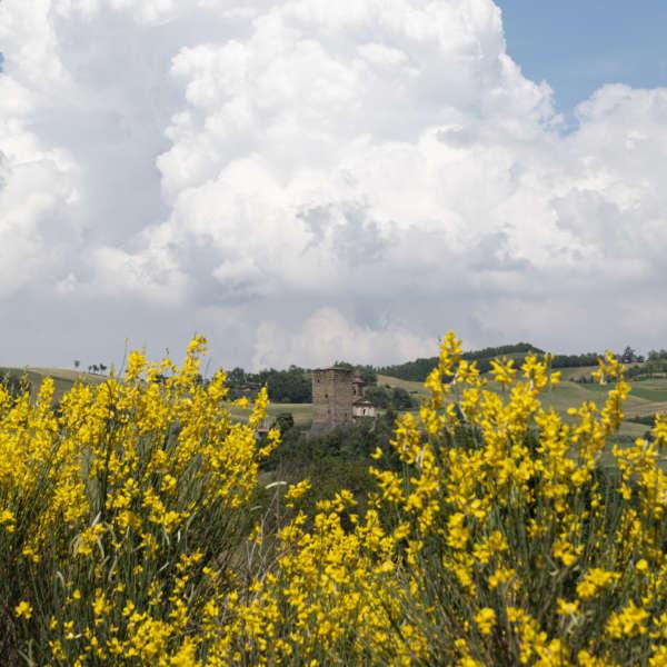 Piacenza come arrivare - val Trebbia - torrione Bobbiano