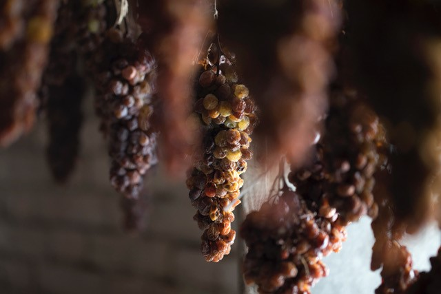 assapora piacenza - malvasia - uva passita