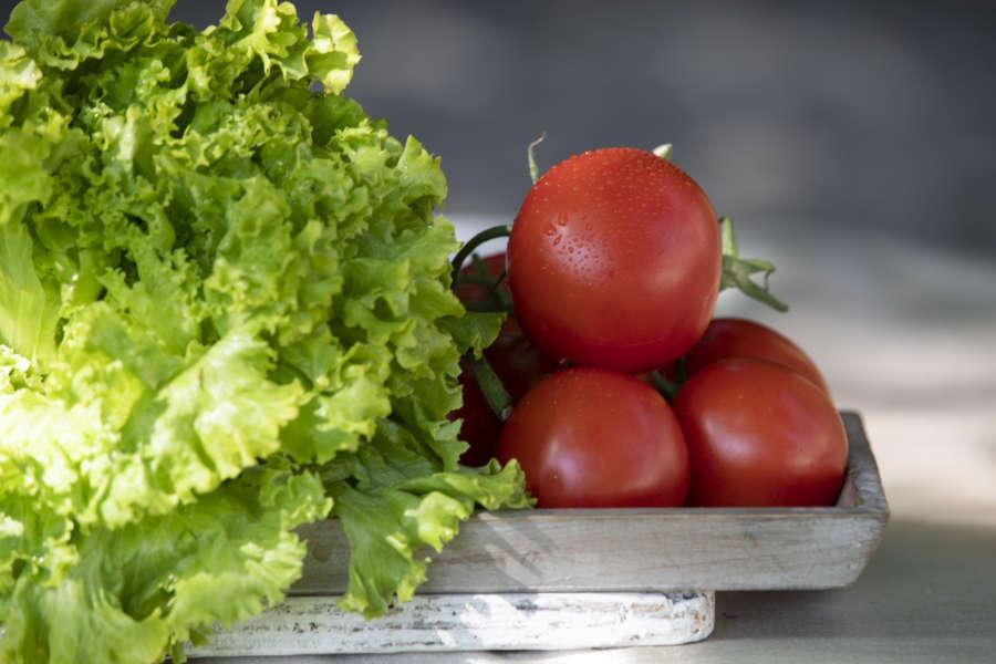 Pomodoro piacentino con insalata