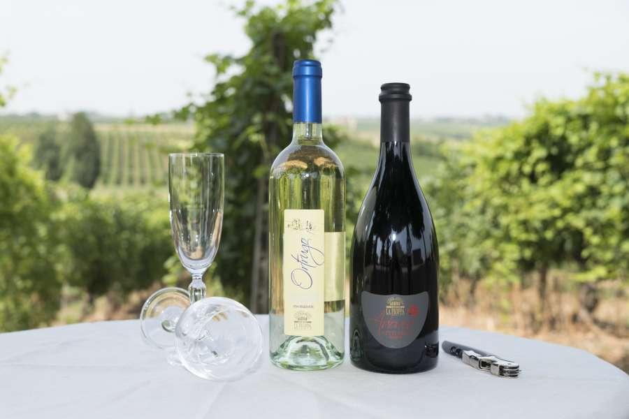 Casamiglio - La Pioppa - vini