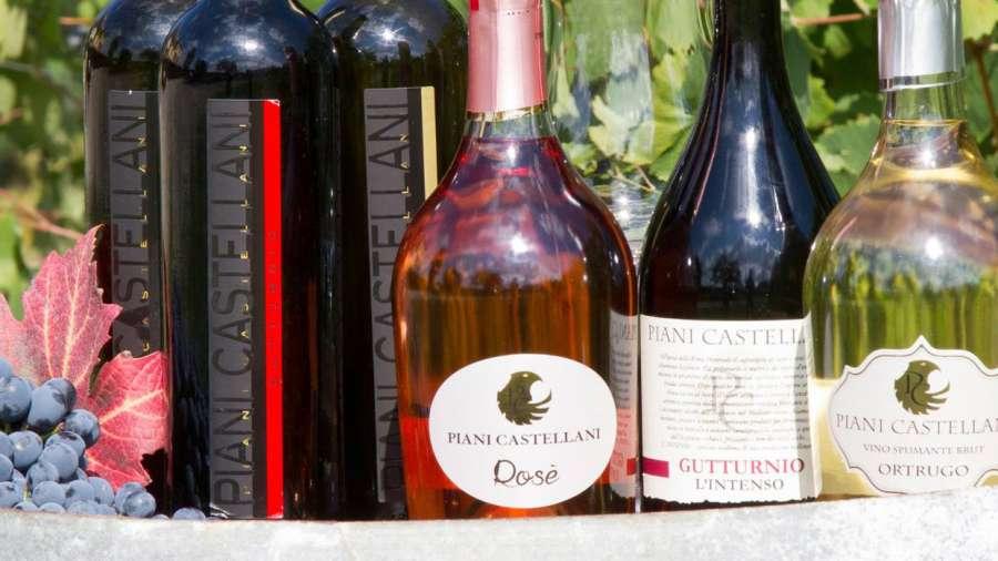 Cantina Manzini - foto bottiglie vini