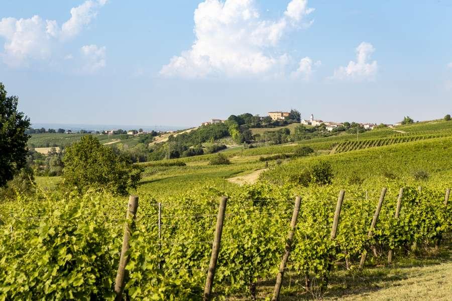 il territorio piacentino - la Val Tidone -7