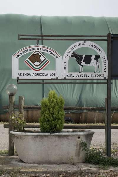 Azienda agricola Graffignana