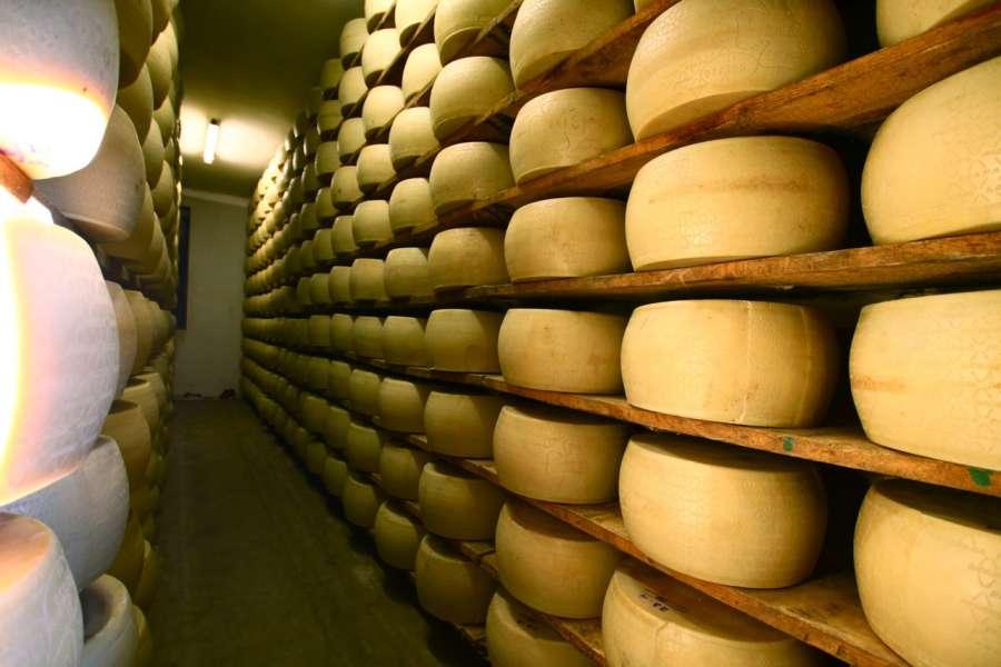 Caseificio Borgonovo - Produzione Grana Padano DOP