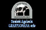 Graffignana - logo
